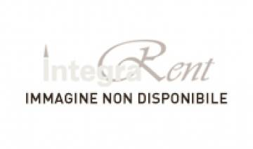 Noleggio Piattino Pane Rim New Bone Ø cm.15