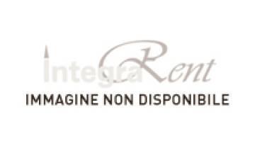 Noleggio Runner Raso/Cotone cm. 200x40 Tabacco