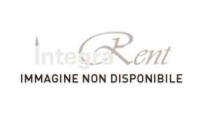 Noleggio sedia parigina oro per catering for Chiavarina sedia